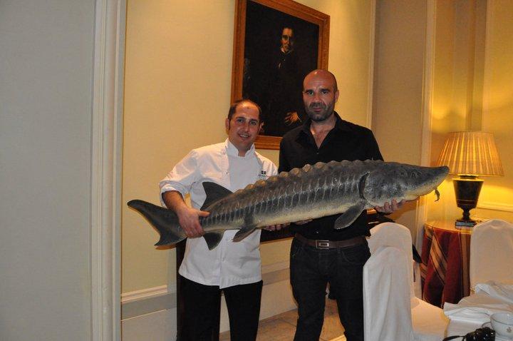 Caviar Ibérico Hotel Palace theme
